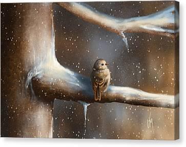 Baby Bird  Canvas Print by Veronica Minozzi