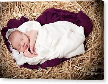 Baby Jesus Nativity Canvas Print by Cindy Singleton