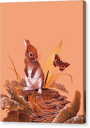 Baby Rabbit Canvas Print by English School
