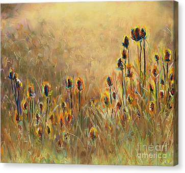 Backlit Thistle Canvas Print by Frances Marino