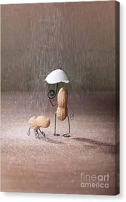 Bad Weather 02 Canvas Print by Nailia Schwarz