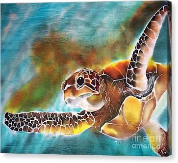 Bahamian Turtle Dove Canvas Print by TIFF Barrett