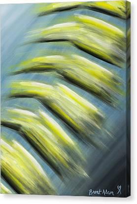 Balance Canvas Print by Brent Buss