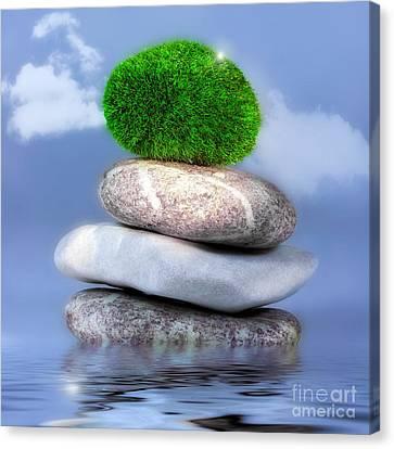 Balance Canvas Print by VIAINA Visual Artist
