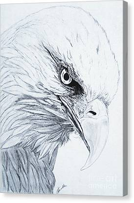Bald Eagle Canvas Print by Nancy Rucker