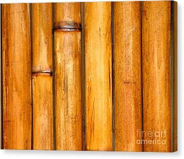 Bamboo Poles Canvas Print by Yali Shi
