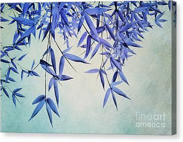 Bamboo Susurration Canvas Print by Priska Wettstein