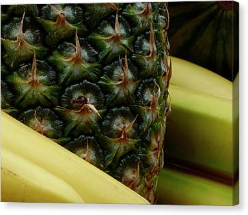 Bananas And Pineapple Still Life Canvas Print by Marcia Socolik