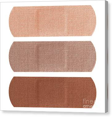 Bandages In Different Skin Colors Canvas Print by Blink Images