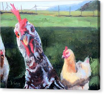 Barbara The Chicken Canvas Print by Donna Tuten