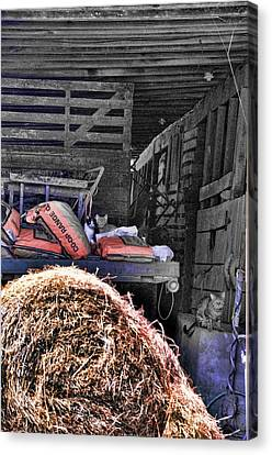 Barn Cats Canvas Print by Jan Amiss Photography
