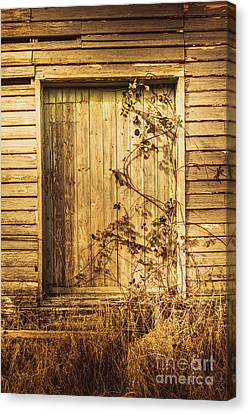 Barn Doors And Hanging Vines Canvas Print by Jorgo Photography - Wall Art Gallery