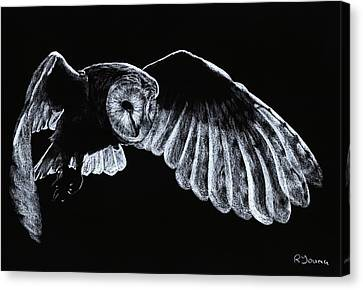 Barn Owl Canvas Print by Richard Young