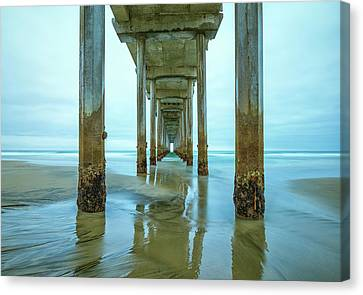 Barnacles Canvas Print by Joseph S Giacalone