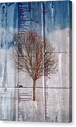 Barnwood...mirage Canvas Print by Tom Druin