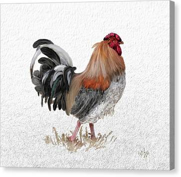 Barnyard Boss Canvas Print by Lois Bryan