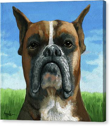 Barry Boxer Canvas Print by Linda Apple