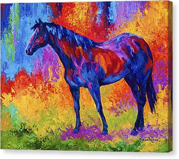Bay Mare II Canvas Print by Marion Rose