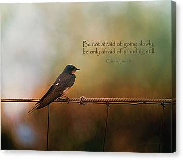 Be Not Afraid Of Going Slowly Canvas Print by Maria Angelica Maira