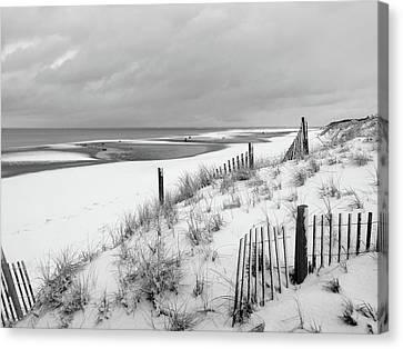 Beach Blanket Canvas Print by Dianne Cowen