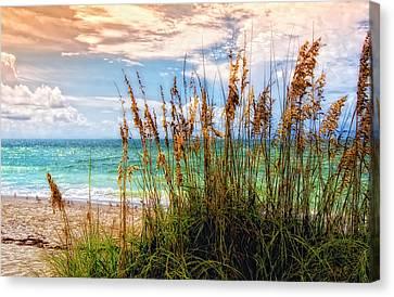 Beach Grass II Canvas Print by Gina Cormier