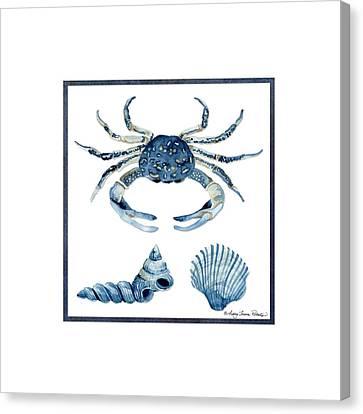 Beach House Sea Life Crab Turban Shell N Scallop Canvas Print by Audrey Jeanne Roberts