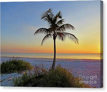 Beach Palm Canvas Print by Chris Andruskiewicz