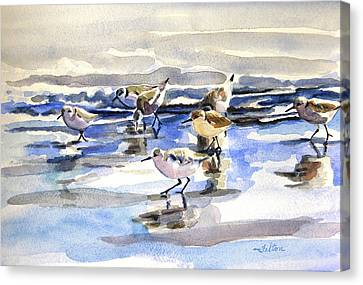 Beach Sandpipers 3-6-15  Canvas Print by Julianne Felton