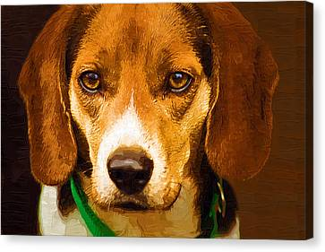 Beagle Hound Dog In Oil Canvas Print by Kathy Clark