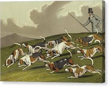 Beagles Canvas Print by Henry Thomas Alken