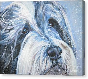 Bearded Collie Up Close In Snow Canvas Print by Lee Ann Shepard