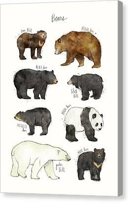 Bears Canvas Print by Amy Hamilton