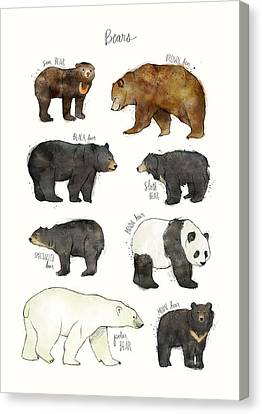 Bears Canvas Print by Amy Hamilton