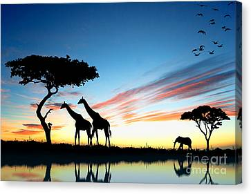 Beautiful  Animals In Safari Canvas Print by Boon Mee