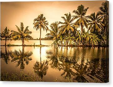 Beautiful Backwater View Of Kerala, India. Canvas Print by Art Spectrum