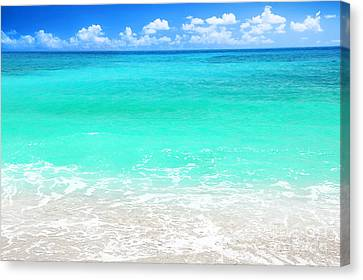 Beautiful Blue Sea Beach Canvas Print by Anna Omelchenko