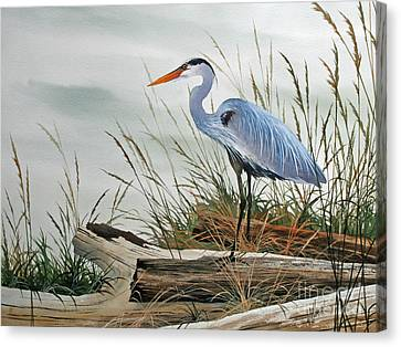 Beautiful Heron Shore Canvas Print by James Williamson