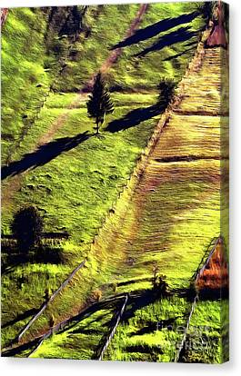 Beautiful Hillside Painting Canvas Print by Odon Czintos