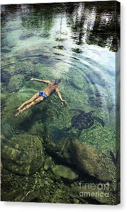 Beautiful Man And Turtle Canvas Print by Brandon Tabiolo - Printscapes
