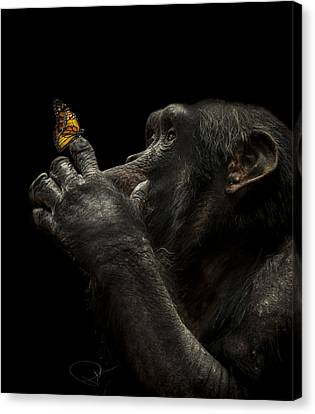 Beauty And The Beast Canvas Print by Paul Neville