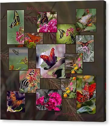 Beauty In Butterflies Canvas Print by DigiArt Diaries by Vicky B Fuller
