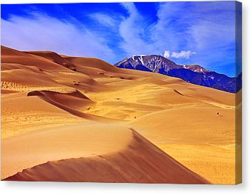 Beauty Of The Dunes Canvas Print by Scott Mahon