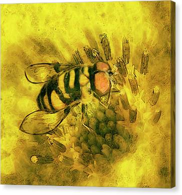 Bee Cause Canvas Print by Jack Zulli