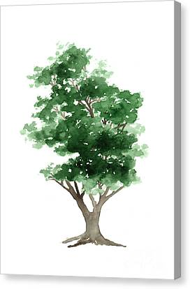 Beech Tree Silhouette Watercolor Art Print Painting Canvas Print by Joanna Szmerdt