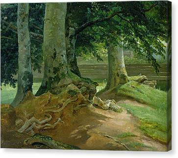 Beech Trees In Frederiksdal Near Copenhagen Canvas Print by Christian Ernst Bernhard Morgenstern
