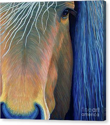 Before Sundown Canvas Print by Brian  Commerford