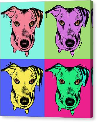 Beg Face Canvas Print by Dean Russo
