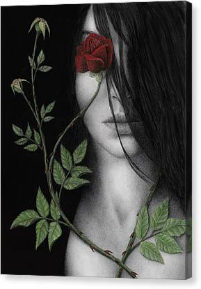 Behind What Beholds The Eye Canvas Print by Pat Erickson
