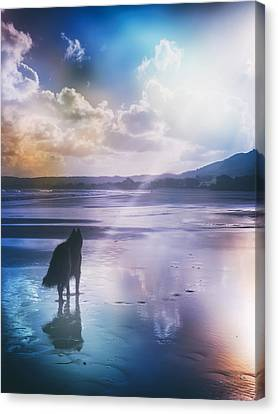 Belgian Sheepdog Artwork Canvas Print by Wolf Shadow  Photography