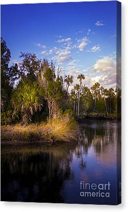 Bent Stream Canvas Print by Marvin Spates